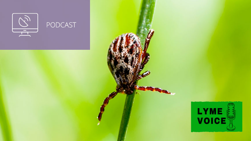Photo Of Tick With Lyme Voice Logo And White Sans-serif Type In Upper Left On Muted Lavender Background With Podcast Icon